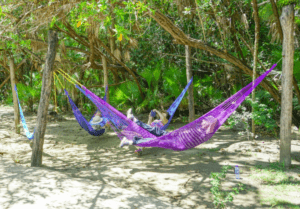 camper group chilling on hammocks
