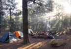 camping in groups