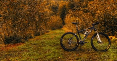 biking this fall