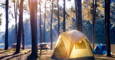 how to clean tent with mold8