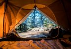 camping tent forest tree
